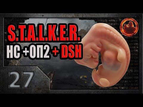 S.T.A.L.K.E.R. Народная солянка ОП-2 DSH mod #27. Фото эмбриона.