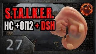 S.T.A.L.K.E.R. Народная солянка ОП-2 DSH mod 27. Фото эмбриона.
