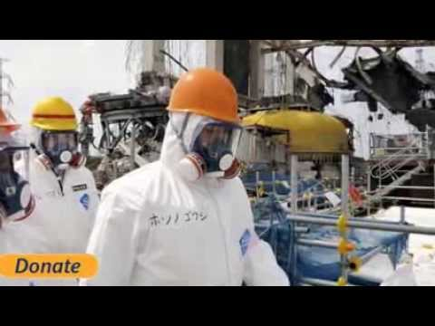 Fukushima PASSES State SECRECY Bill while Removing SFP#4 Spent Fuel Rods Update 11/26/13