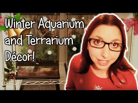 Christmas/Winter Fish Tank And Terrarium Decorations!!