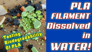 PLA Dissolved in Water | Biodegradability Testing