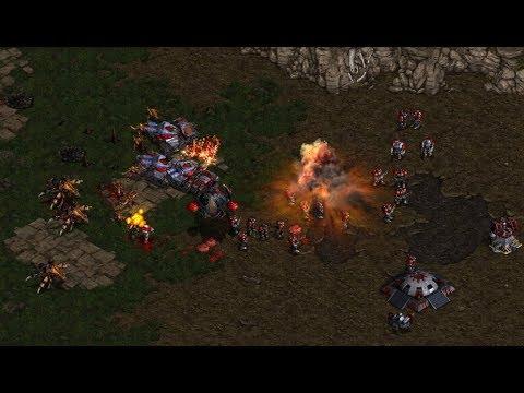 Download BoxeR (T) v Jaedong (Z) on Python - StarCraft  - Brood War REMASTERED
