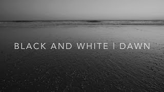 Living Landscape   Black and White   Dusk [4K]