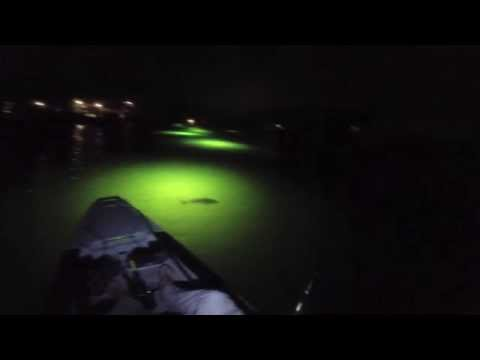 fishing green lights in galveston, texas - youtube, Reel Combo