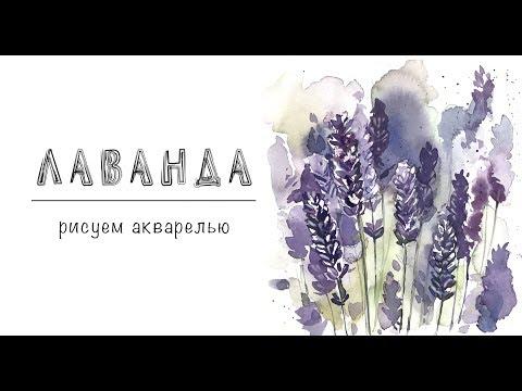 Цветы -