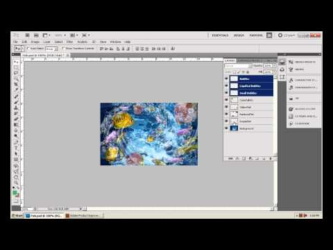Photoshop CS5 - Phan 1 - Bai 10 - Opacity Layer