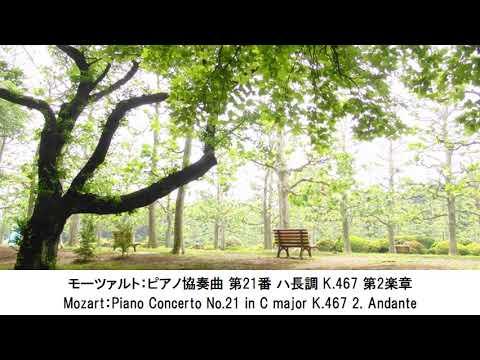 のんびりできるクラシック名曲集・Leisurely Classical Music Collection(長時間作業用BGM)