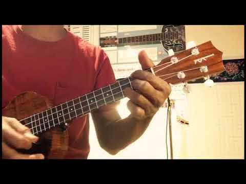 Midnight special ukulele