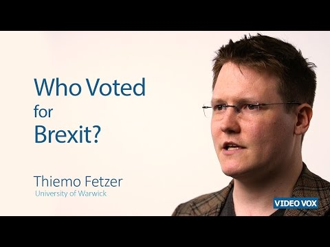 Who voted for Brexit?