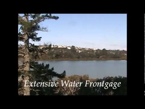 Waterfront Lifestyle Property For Sale in Albany NZ