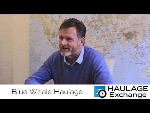 Blue Whale Logistics | Case Study