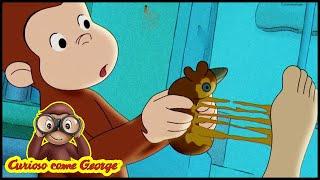 Curioso come George 🐵La scimmia pazza!  🐵Cartoni Animati per Bambini 🐵Stagione 9