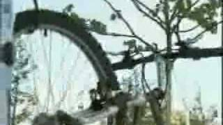 A New Way to Park Bicycles.. Hang them in a Bike Tree!