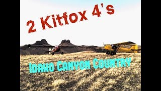 Bush Flying the Owyhee's with KitFox Model 4's