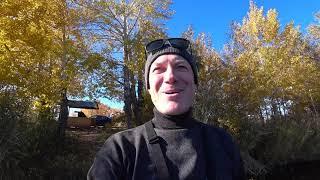 Осенняя рыбалка жор окуня