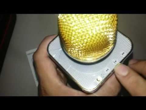 Portable Mic, Karaoke portable