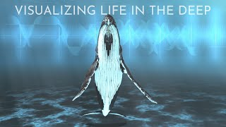 Visualizing Life in the Deep