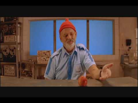 The Life Aquatic with Steve Zissou - Does this seem fake?
