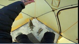 Запретная Рыбалка Или