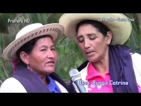 Reportaje Plantila y Flura burga la paccha - santa cruz