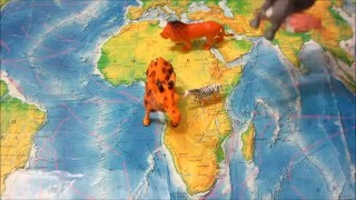 Животные Африки мультик для детей. Лев. Жираф. Зебра. Слон. Носорог. Крокодил.