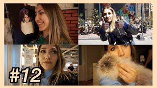 ÇÜNKÜ BENSİZ YENI EV ALIŞVERİŞİ OLMAZ   Günlük Vlog #12