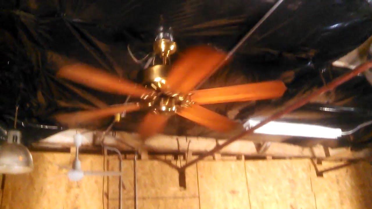 Unknown american industries calcutta 6 blade ceiling fan pb unknown american industries calcutta 6 blade ceiling fan pb mozeypictures Image collections