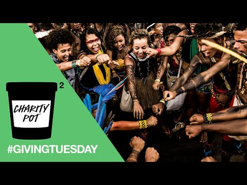 Lush Cosmetics: Double Your Impact For Giving Tuesday