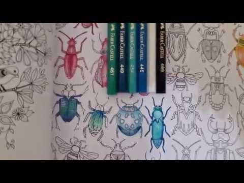 How To Color Secret Garden Coloring Book Bugs