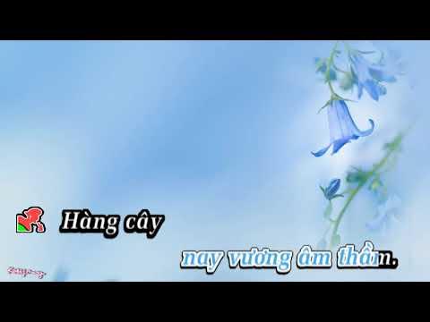 LK Dấu tình sầu & Lệ đá - Karaoke DLKARA
