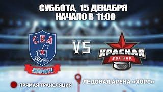 Кубок Ладоги 2010. СКА-Варяги 10 -Красная Звезда 10. 15 декабря, начало в 11:00