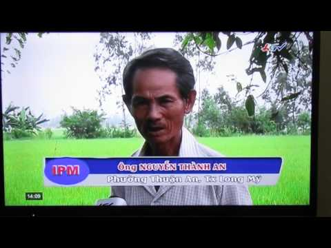 Integrated Pest Management Program In Vietnam 01