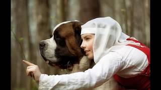 Часть 1 Сенбернар Швейцарский и Московская Сторожевая. Монастырская Собака Описание Породы Слайд Шоу