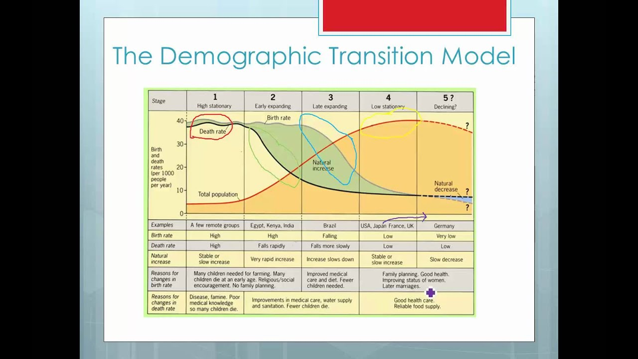 theory of demographic transition essay