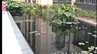 90년 VHS비디오테이프 변환 영상 dvdro.com