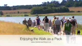 Nessr Charity Pack Walk