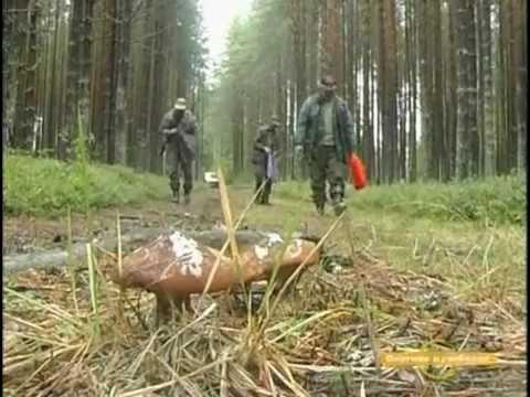 Рыбалка и охота в Карелии-1
