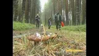 Рыбалка и охота в Карелии-1(Отдых в Карелии. На http://www.dreamhaus.ru вы можете посмотреть другие видео про охоту и рыбалку, арендовать коттедж..., 2013-03-22T19:24:42.000Z)