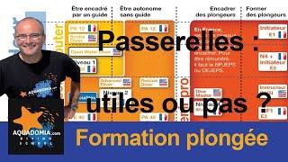 Passerelles niveau plongée français / américain : utiles ou pas ?