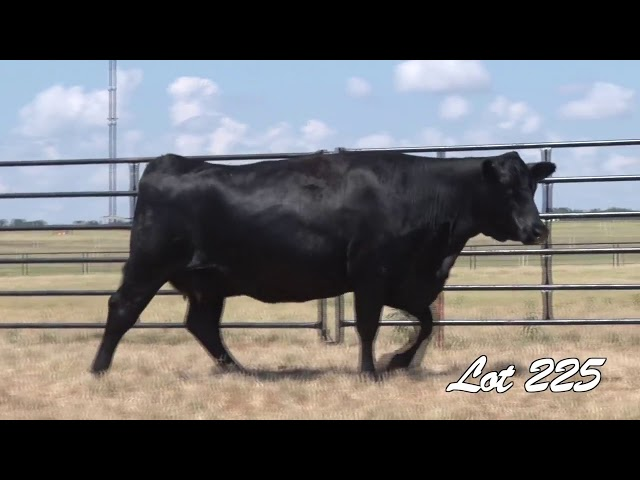 Pollard Farms Lot 225