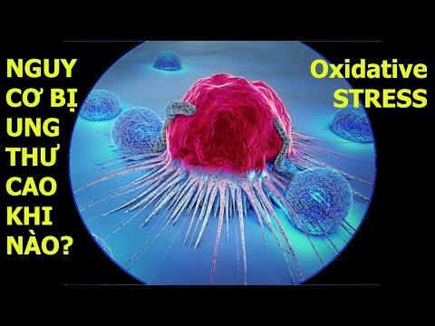Cách Chống oxy hoá cơ thể, phòng ngừa ung thư