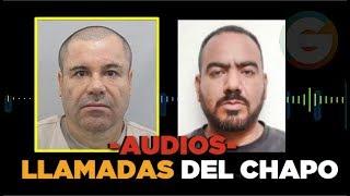 Audios de las llamadas del Chapo y El Cholo Iván #JuicioChapo