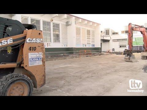VÍDEO: Las obras de la pista cubierta del San José de Calasanz avanzan a buen ritmo y finalizarán en febrero