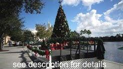 "Celebration FL Christmas ""Now Snowing"""