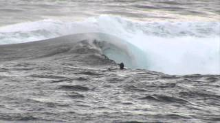 Bodyboard: Reeflex Team - Canary Islands
