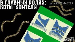 """Песня ,,ГИМН КОТОВ-ВОИТЕЛЕЙ"""""""