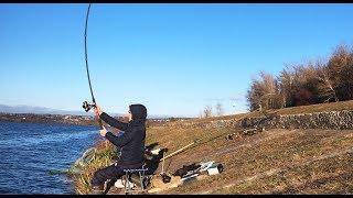 Ловля карпа осенью на донку.Рыбалка.Fishing