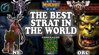 Grubby | Warcraft 3 TFT | 1.30 | NE v ORC on Concealed Hill - The BEST Strat in the WORLD