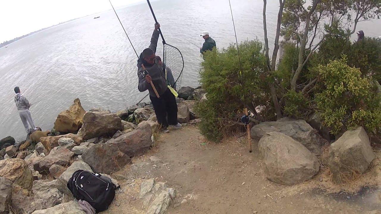 2012 8 25 rex lands a benicia salmon youtube for Benicia fishing report