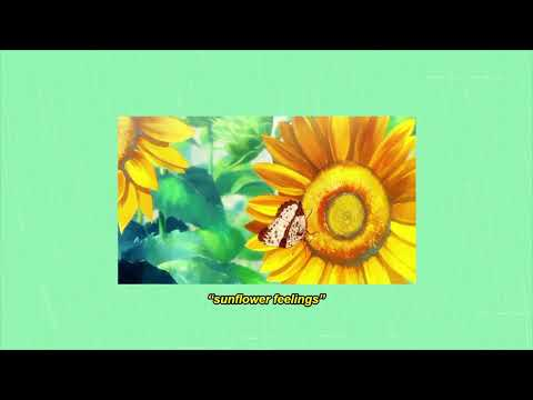 Kuzu Mellow - sunflower feelings (prod. by korou)